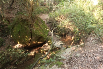 Lugar donde brota el agua2