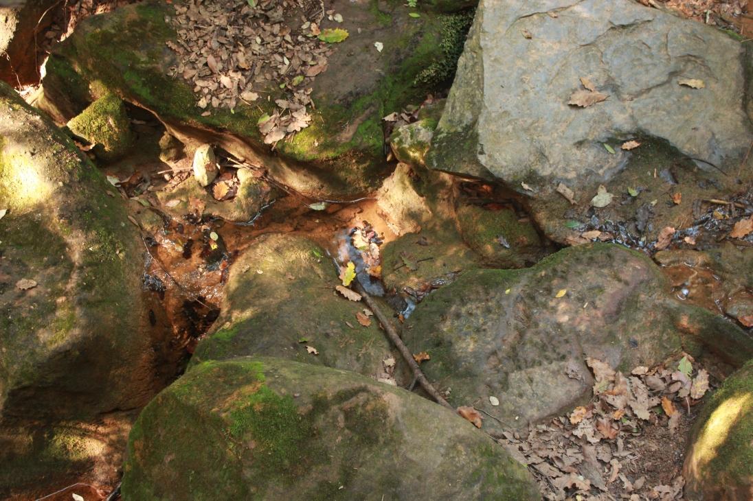 Lugar donde brota el agua1